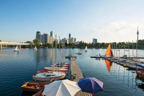 Sommertage an der Alten Donau